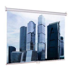 все цены на Проекционный экран Lumien Eco Picture LEP-100102 онлайн